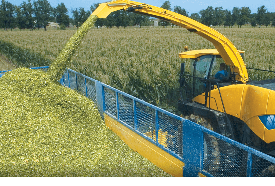 Forage Harvester Yield Mapping